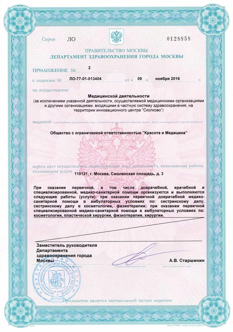 Приложение к лицензии ООО «Ренессанс»
